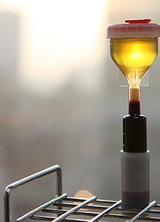 PRP-терапия в клинике лазерной косметологии L-Clinic